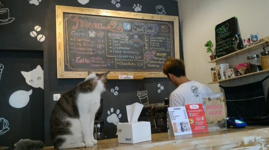 Cats and Coffee menu