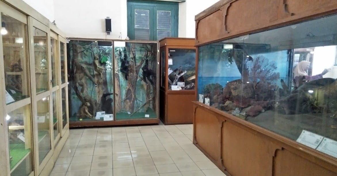 Museum Biologi UGM