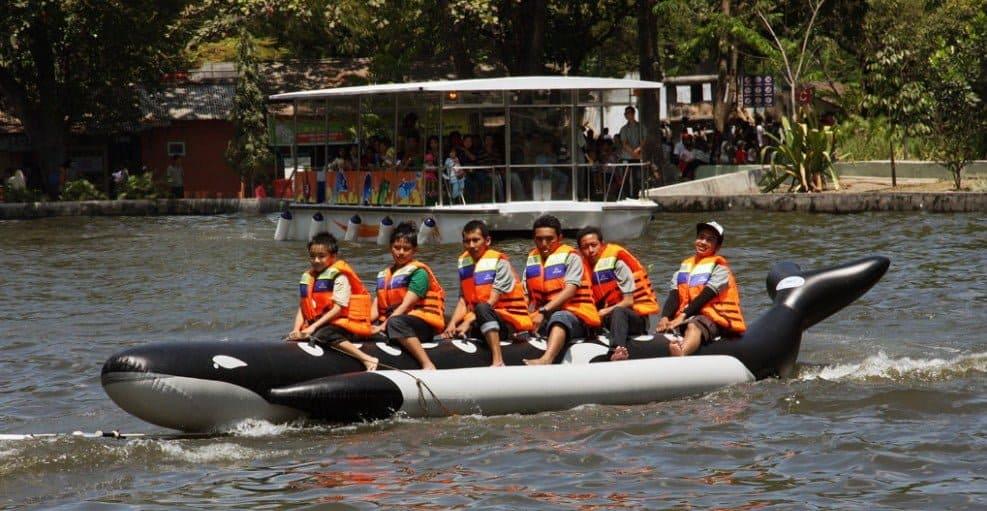 Banana Orca Boat